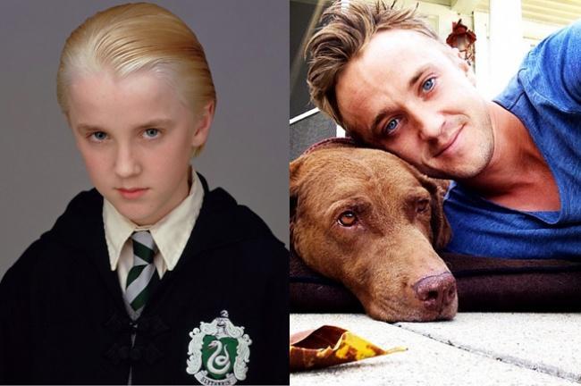 Daniel Radcliffe Dog Names