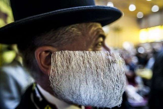 barbas-estranhas-15