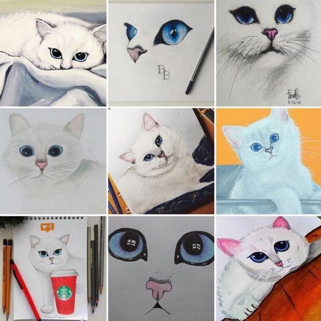 gato-com-delineador-9