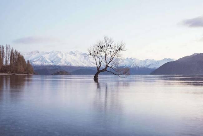 nova-zelandia-lugar-magnifico-22