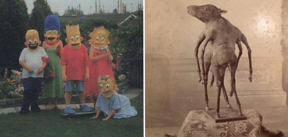 """15 Imagens muito esquisitas e assustadoras que vão te fazer pensar """"WTF?!"""""""