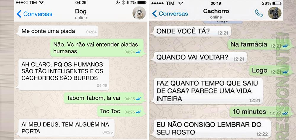 cachorro-whatsapp