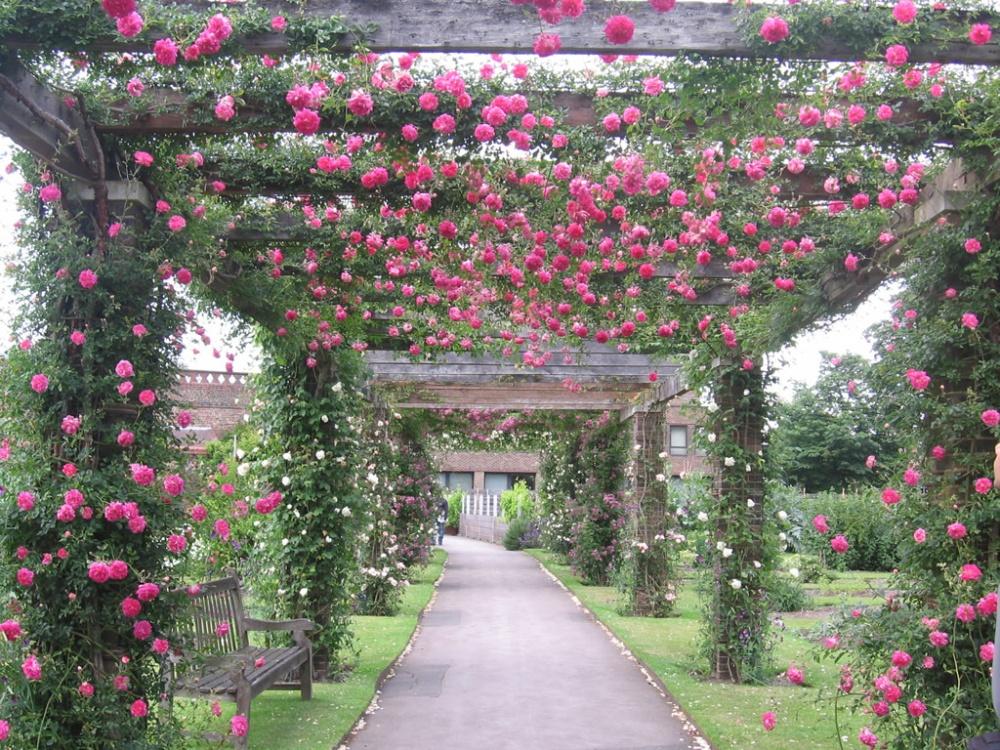 maravilhosos-jardins-e-parques-4-3