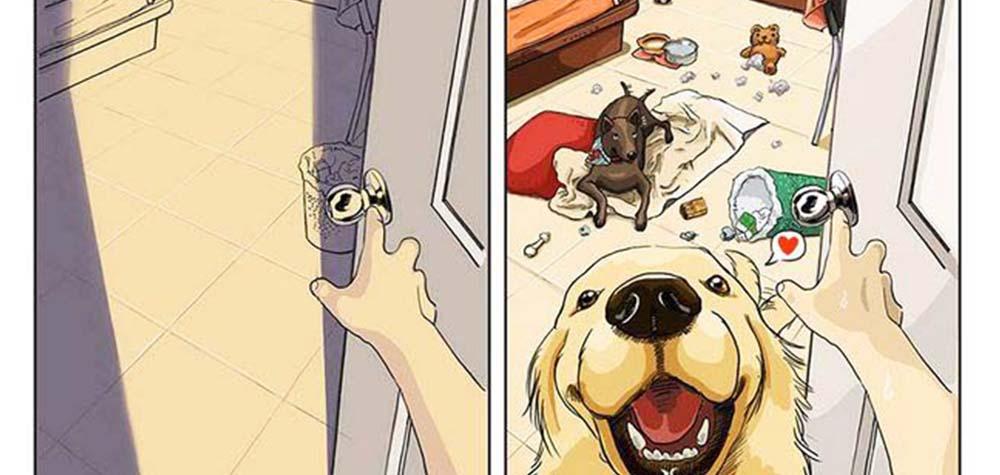 9 Ilustrações sobre a vida antes e depois de ter um pet