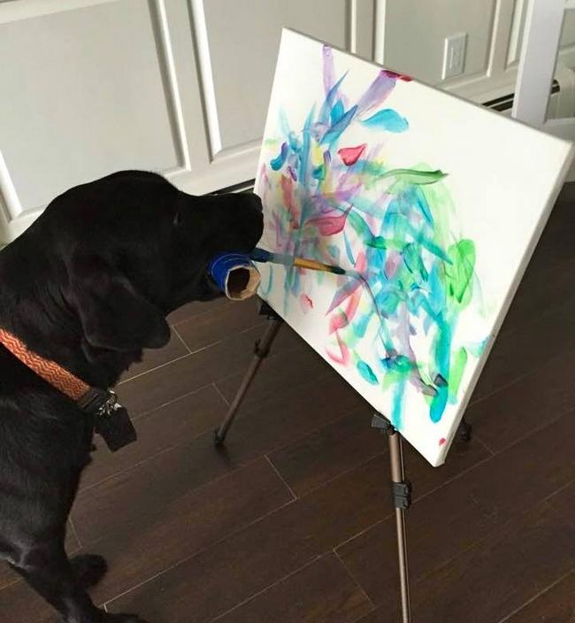 Cachorro-Pintor-2