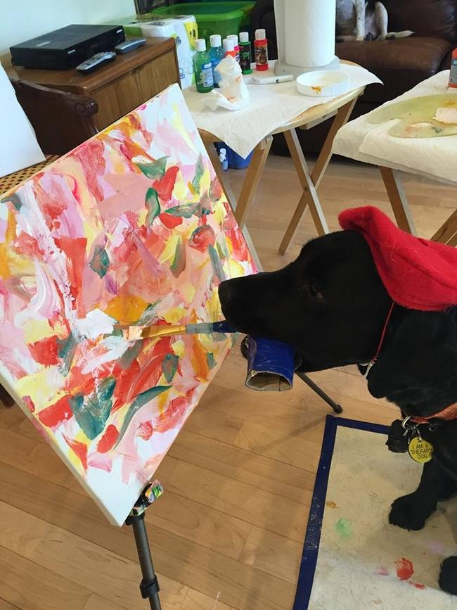 Cachorro-Pintor-3