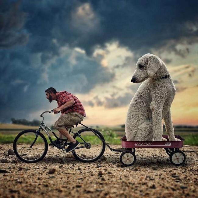 cachorro-gigante-1