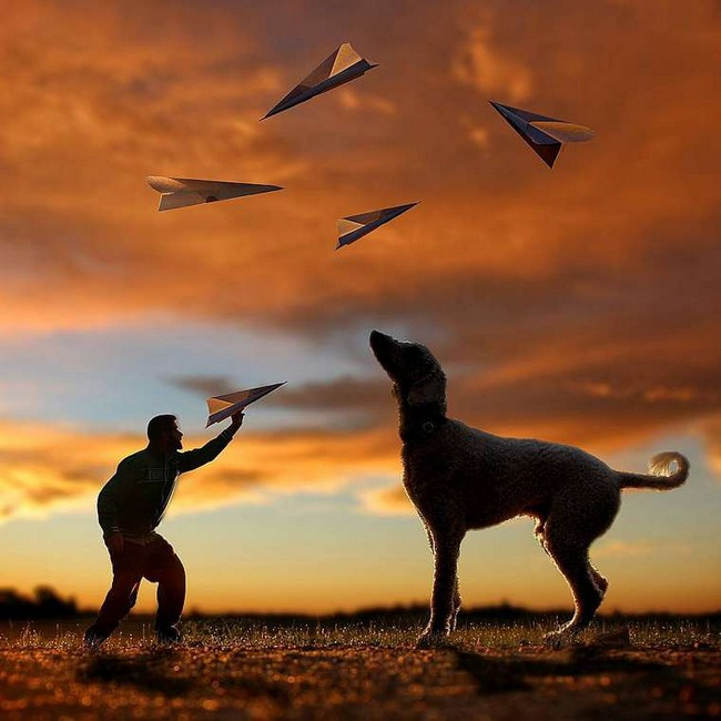 cachorro-gigante-2