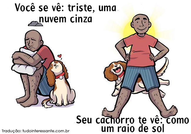 como-cao-ve-dono-10