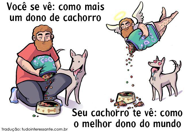 como-cao-ve-dono-11