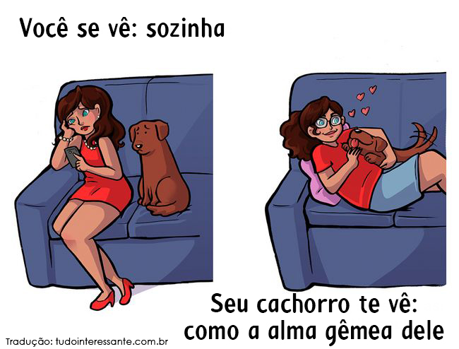 como-cao-ve-dono-2