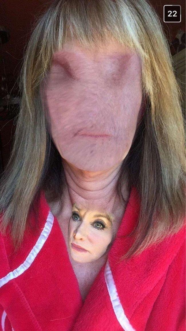 faceswap-bizarros-8