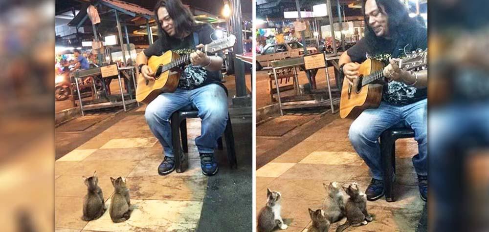 Todos estavam ignorando esse músico. Até que a plateia mais fofa parou para ouvi-lo