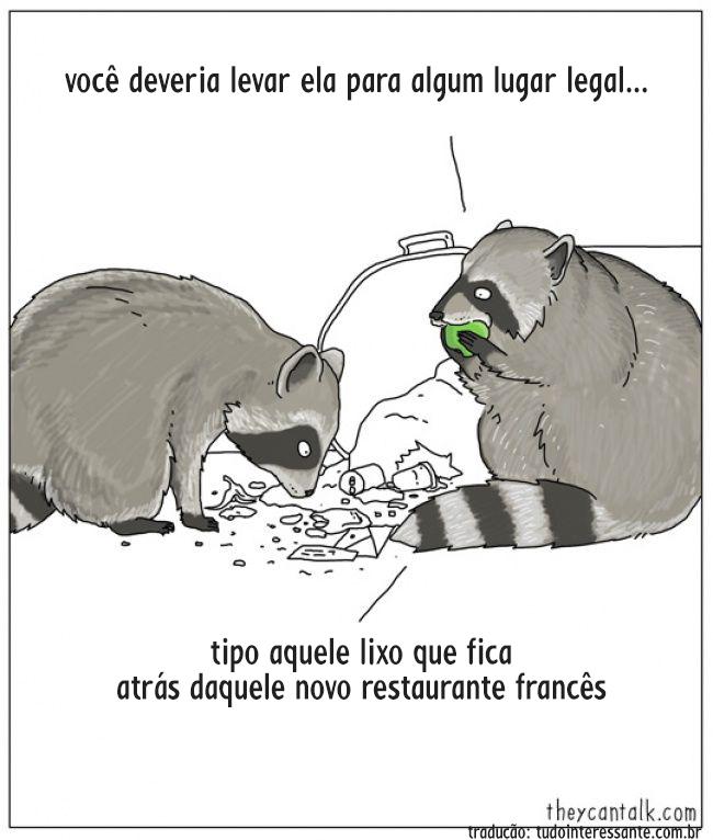 animais-falassem-9