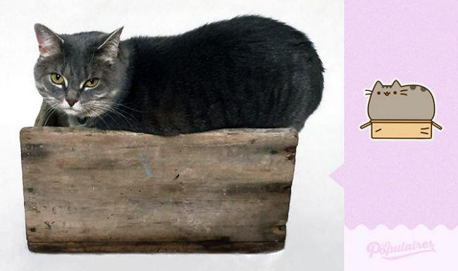 gato-recria-emoji-11