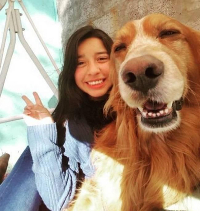 Selfie-Cachorro-16
