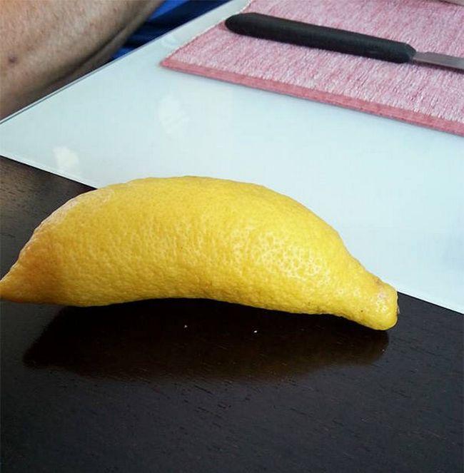 frutas-bizarras-12