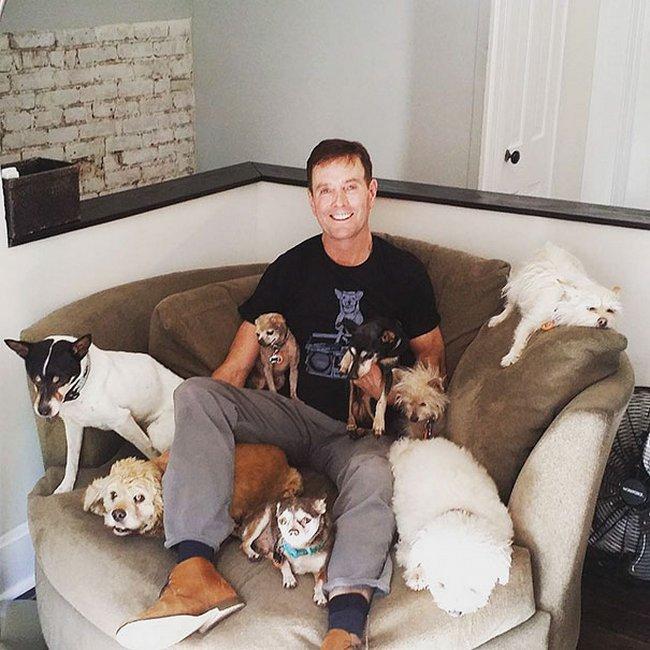 cachorros-idosos-adotados-8