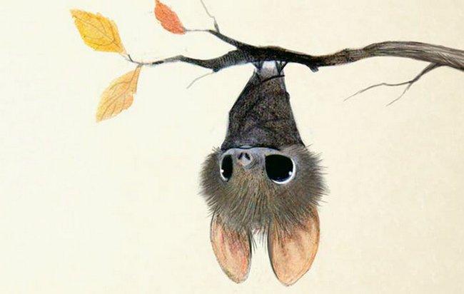 ilustracoes-de-animais-1