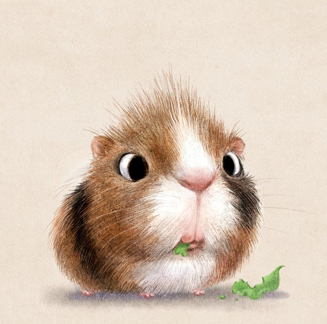 ilustracoes-de-animais-10