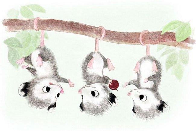 ilustracoes-de-animais-11