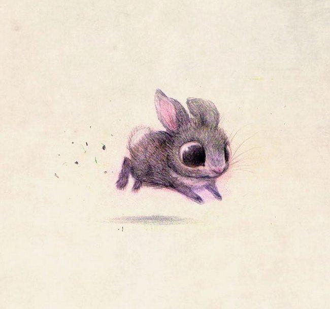 ilustracoes-de-animais-2