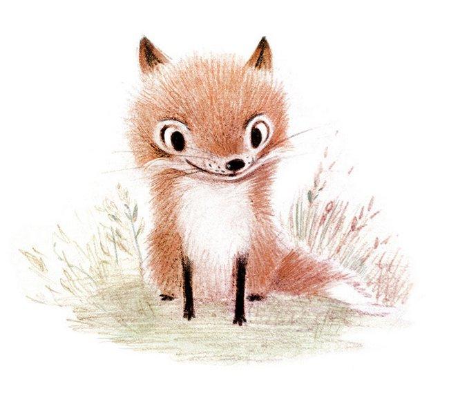ilustracoes-de-animais-5