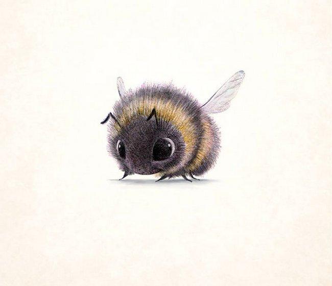 ilustracoes-de-animais-6