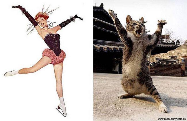 gatos-e-pinups-12