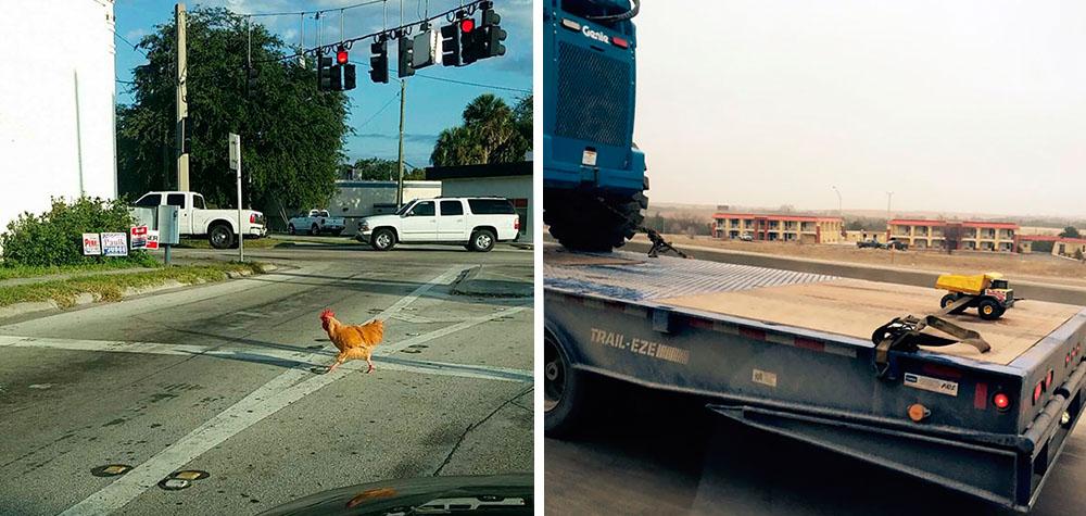 16 Pessoas que não acreditaram no que viram no trânsito